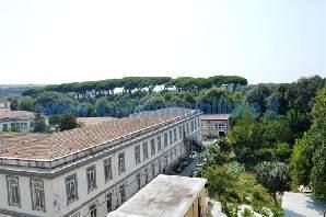ufc029-Ufficio-CASERTA-corso-giannone